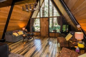 TREE HOUSES IN USA