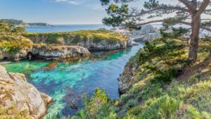 Places to visit in Monterey