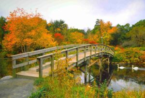 Where to See the Changing Fall Leaves in the US